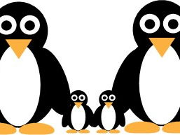 Graphic Essentials: Creating a vector graphic penguin using Adobe Illustrator