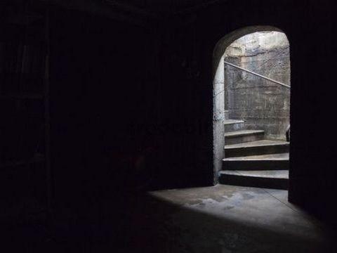 Gothic Literature- Language analysis- Dracula, Frankenstein and Jekyll & Hyde
