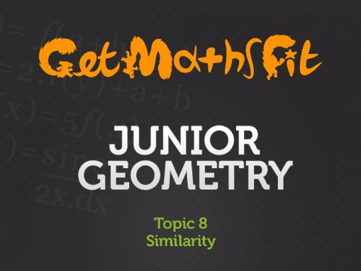 Similarity in Geometry (Topic 8): Series of lessons, exercises and solutions.