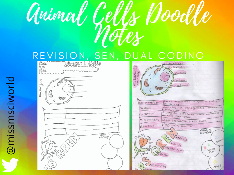 Animal Cells Science Doodle Note