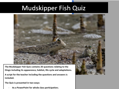 Science: Living things and their Habitats: Mudskipper Fish Quiz