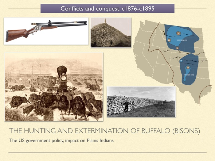 GCSE History of American West in 1800s. Unit 3 The Hunting and Extermination of Buffalo