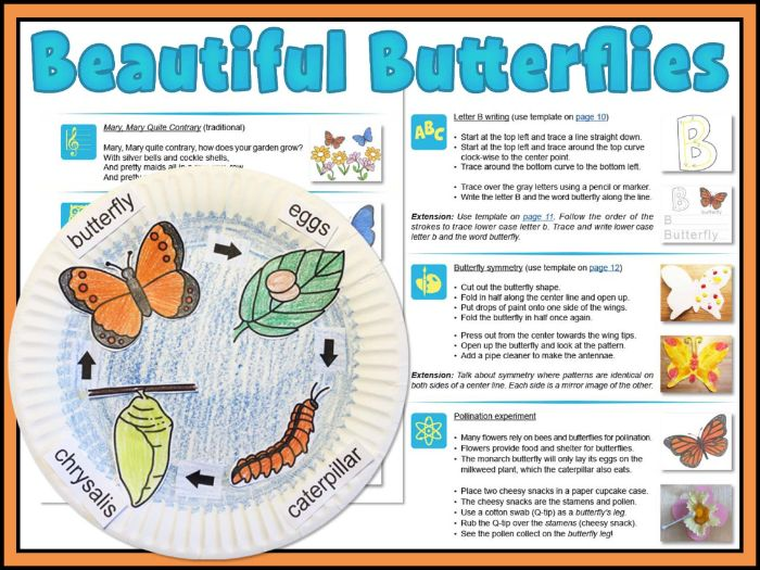 Beautiful Butterflies: writing and science activities