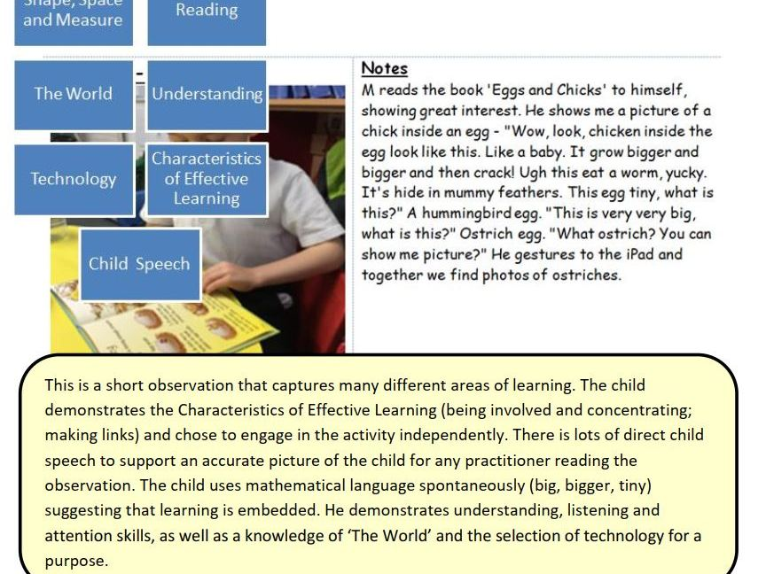EYFS Observations: Examples of high quality observations in the Early Years