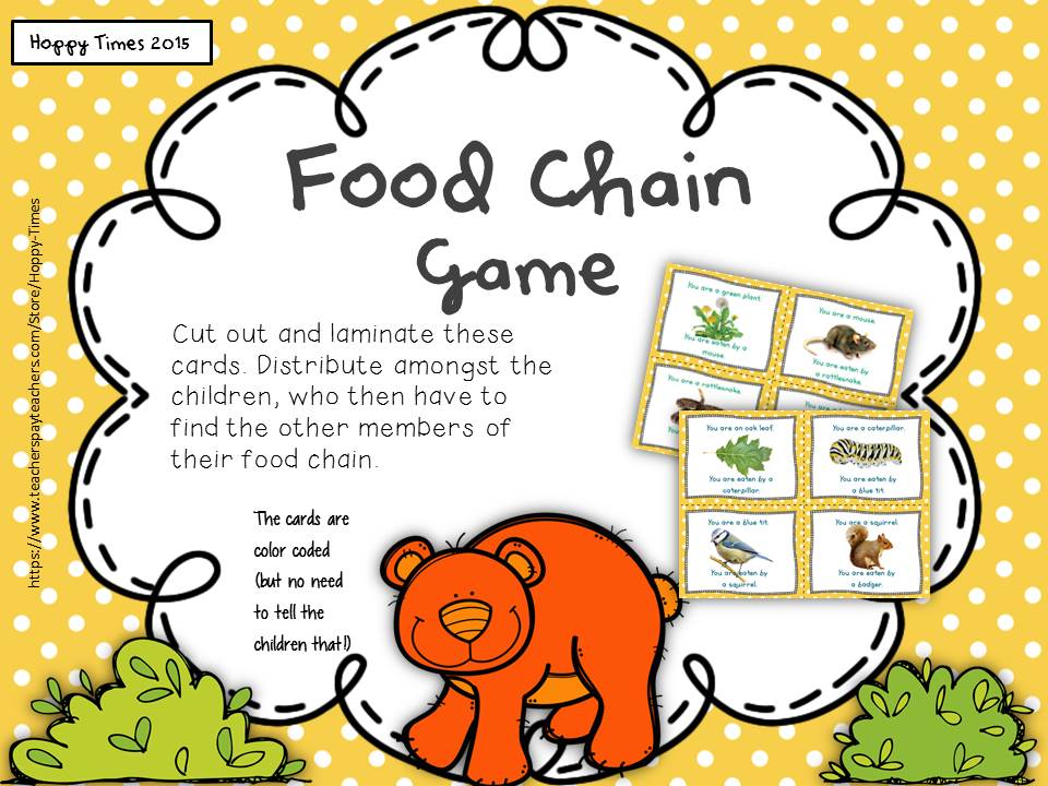 photo relating to Food Chain Printable Activities titled Science Foodstuff CHAIN / PREDATOR PREY Video game Game