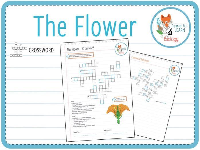 The Flower - Crossword (KS2/KS3)