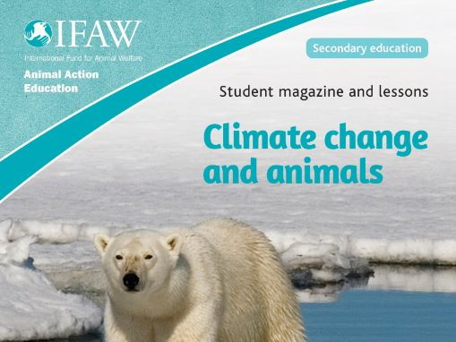 Climate change and animals (KS3)