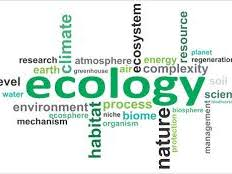 4.7 AQA Biology (Foundation Combined Tier) Ecology