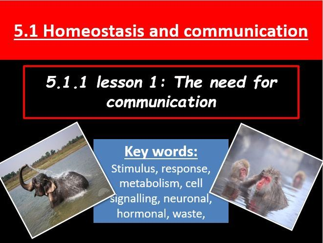 5.1 Homeostasis and communication resource bundle for the new OCR A-Level biology A  spec