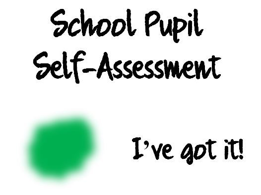 Poster for supporting pupil self assessment