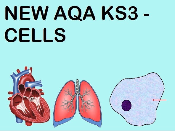 NEW AQA KS3 SPECIFICATION - CELLS (WHOLE TOPIC - 8 lessons)