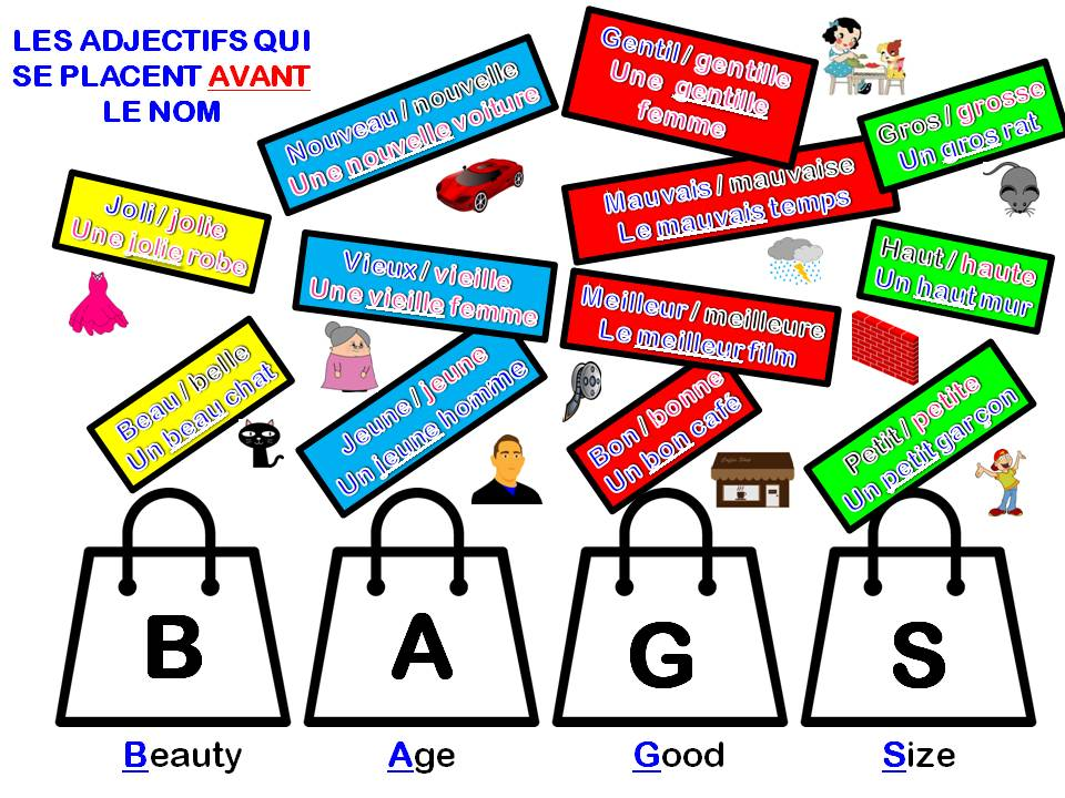 French:  Adjectives which go before the noun