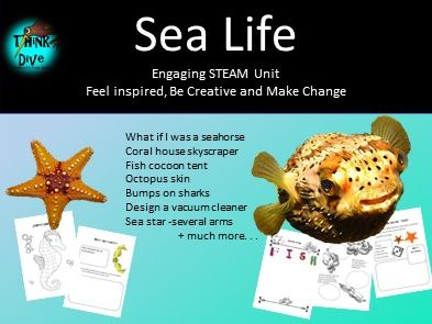 Project Based Learning: Sea Life - STEAM, Biomimicry, KS1, NGSS