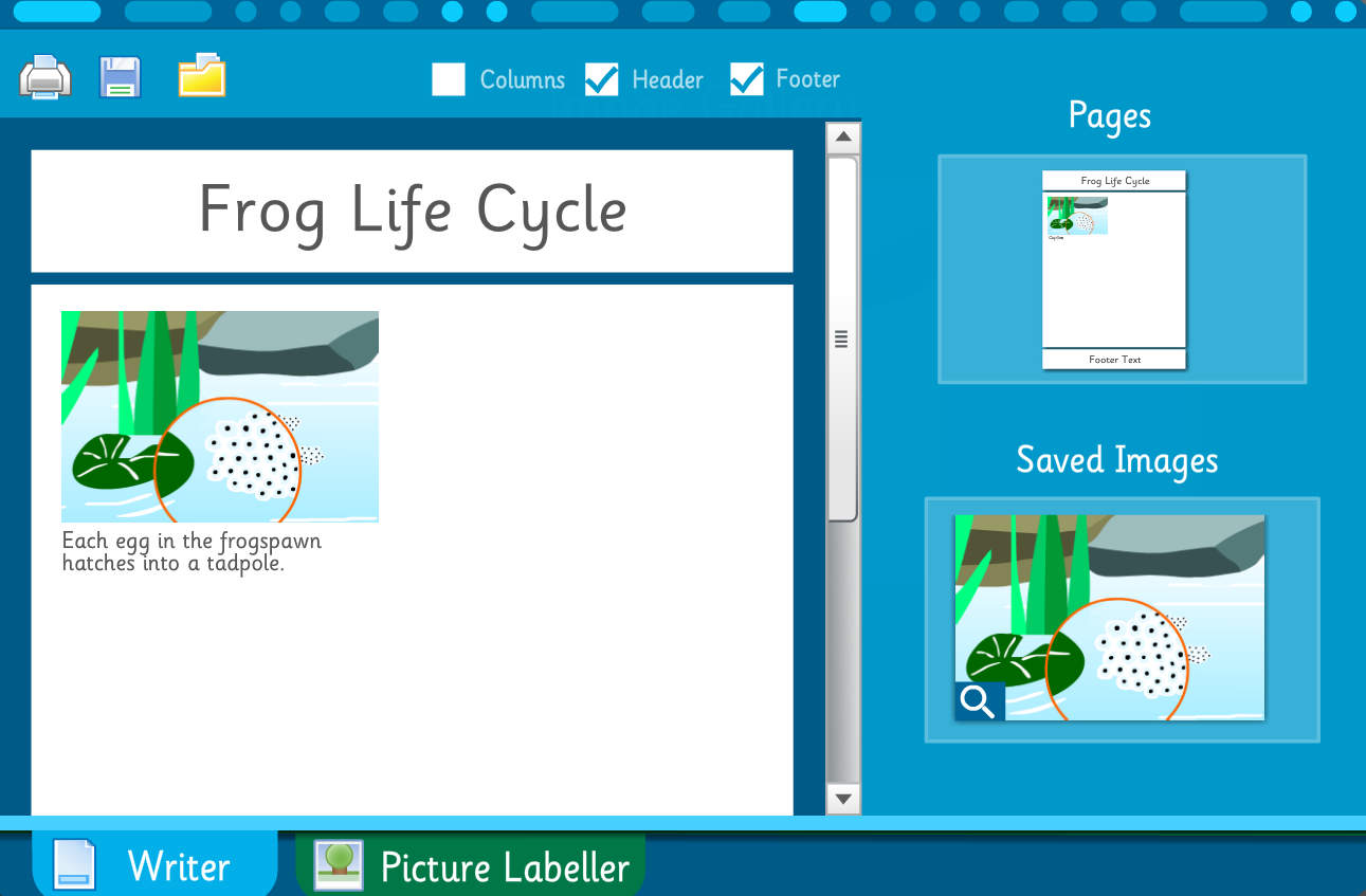 Make Your Own Information Poster: Frog Life Cycle - Interactive Activity - KS2 Literacy