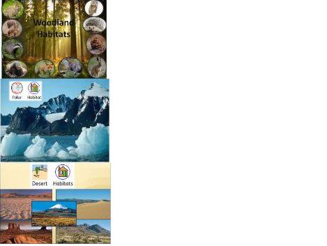 All about animal habitats (Woodland, Polar, desert)