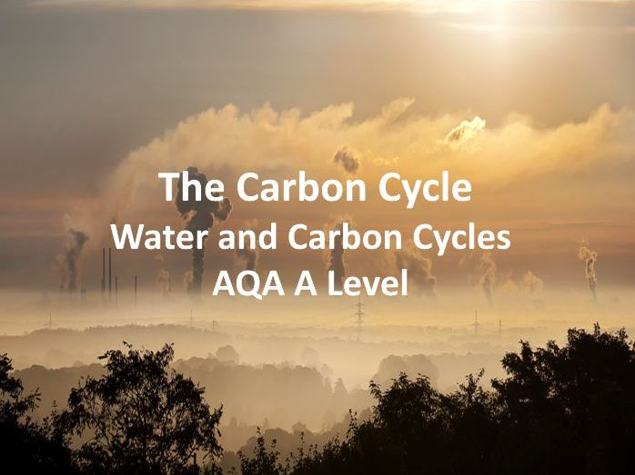 The Carbon Cycle (1) - AQA A Level Geography