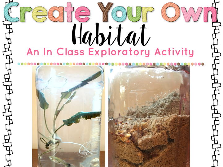 Create Your Own Habitat Activity