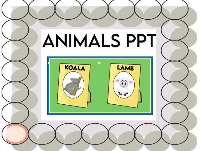 Animals in Picture Frames PPT EYFS KS1