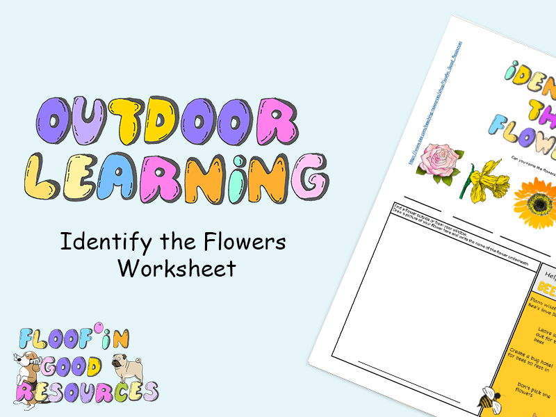 Outdoor Learning - Flower Observation Sheet