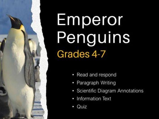 Emperor Penguins - Information Text
