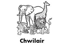Chwilair - Anifeiliaid Affrica