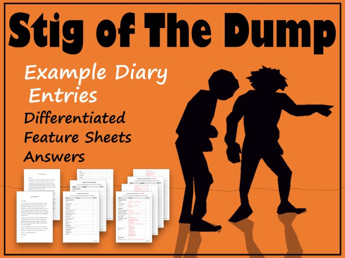 Stig of the Dump Example Diary Entries, Feature Identification & Answers
