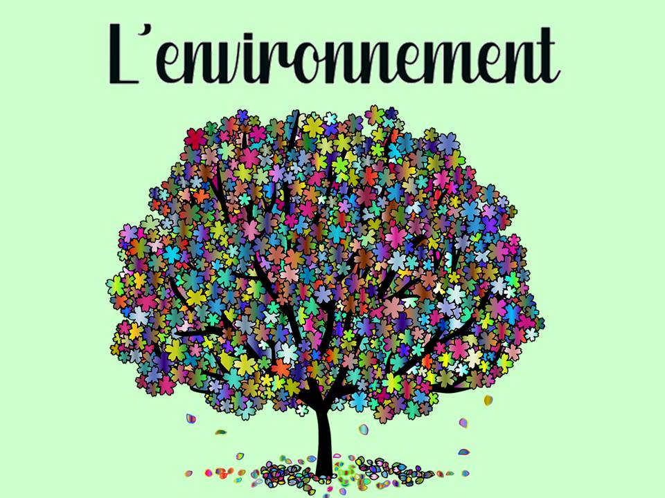 The environment in French