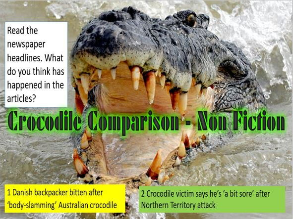 Crocodile Comparison  - Non-Fiction