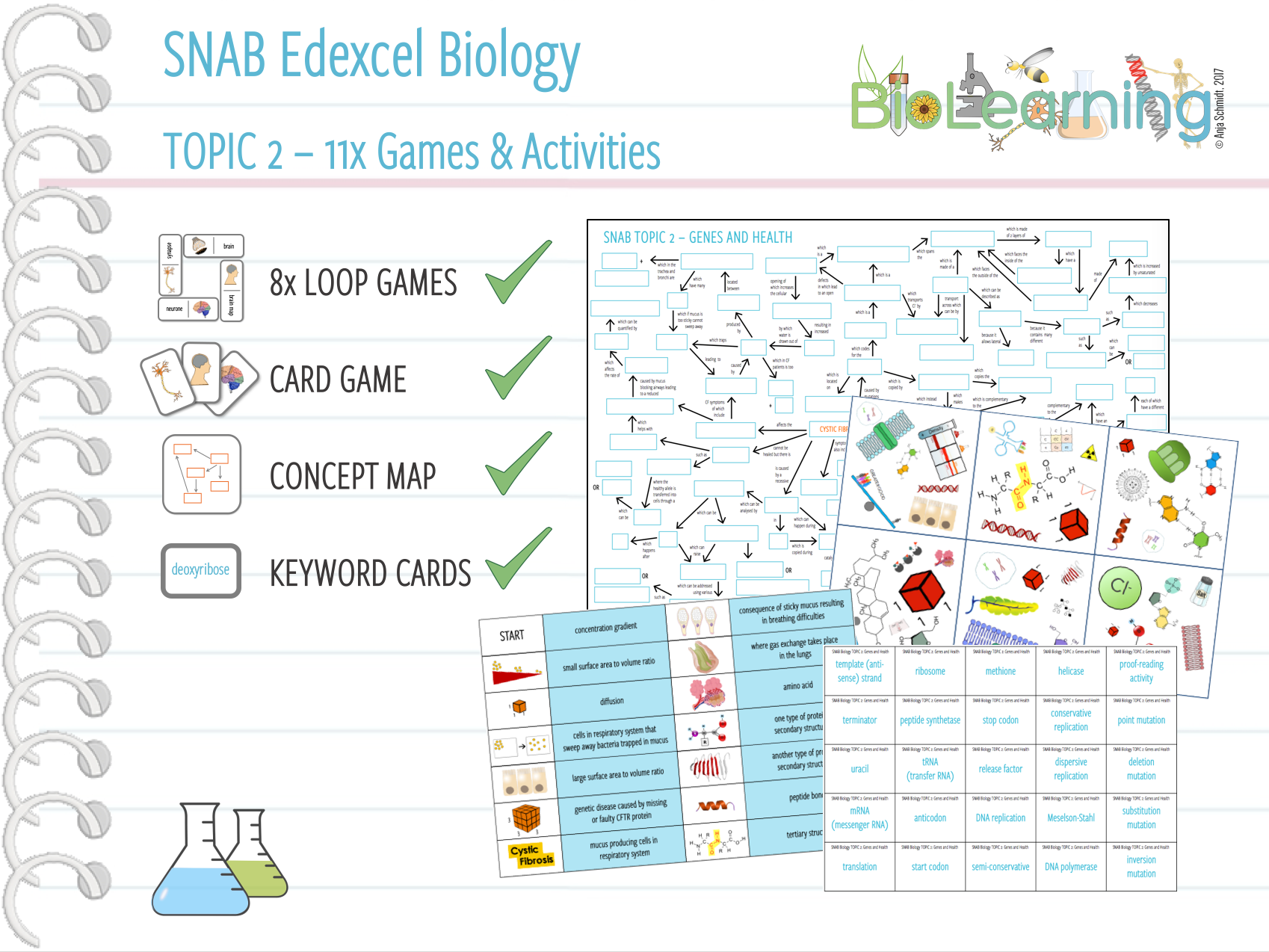 11x Games and Activities for SNAB Biology Topic 2: Genes and Health