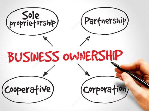 Ownership and SWOT