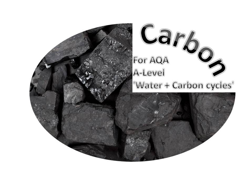 CARBON for AQA A-Level 'Water + Carbon cycles'