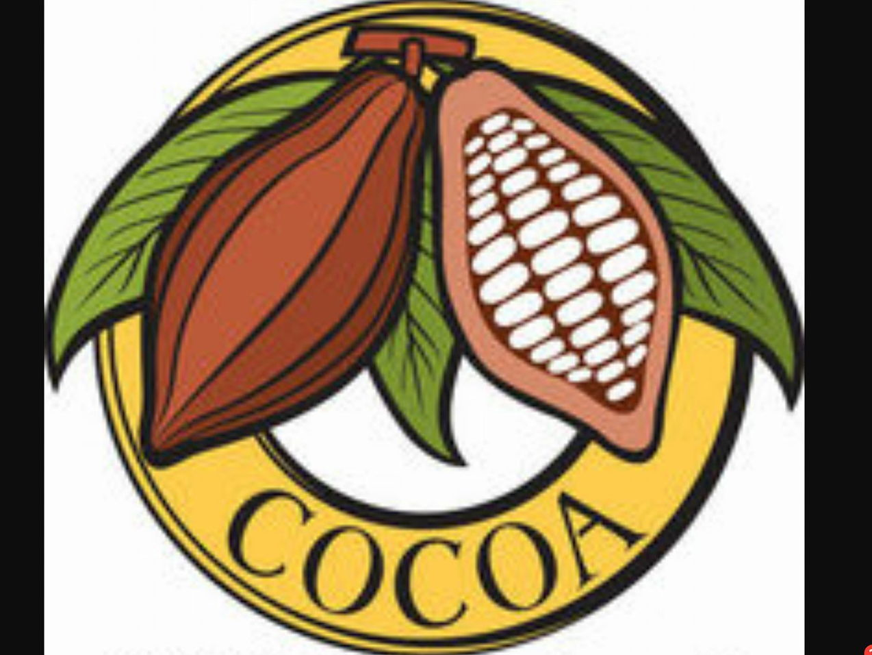 SEN Geography/PSHCE/Fair Trade Cocoa Loco Trading Game