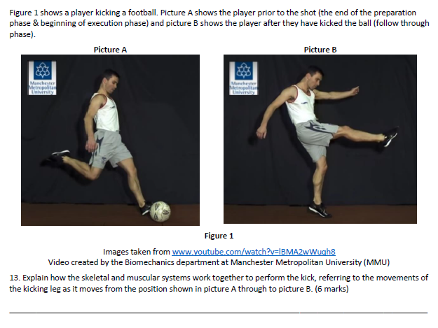 GCSE PE - movement analysis worksheet/test number 2 - lower body focus