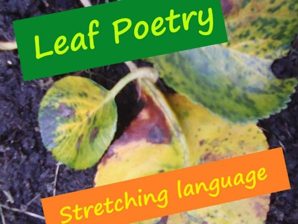 Autumn Leaves Poetry