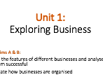 BTEC L3 Business 2016 Unit 1 Learning Aim A (Ownership & Liability) lesson ppt & Activity