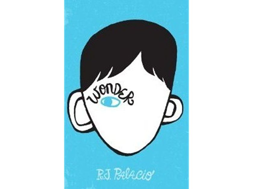 'Wonder' by R. J. Palacio bundle for KS3 English