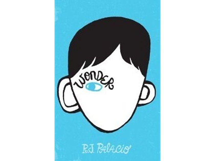 'Wonder' by R. J. Palacio bundle for KS3 English