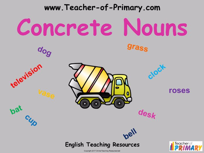Concrete Nouns 18 Slide Powerpoint And 2 Worksheets By