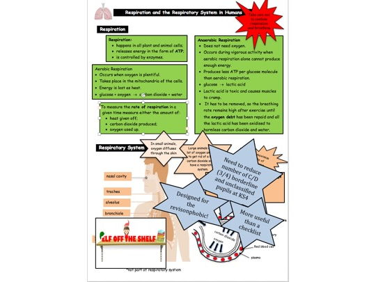 Respiration KS4 for the Revision Phobic!