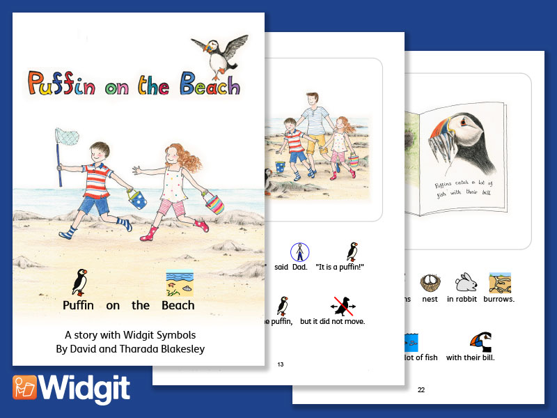 Puffin on the Beach  - Illustrated Book with Widgit Symbols