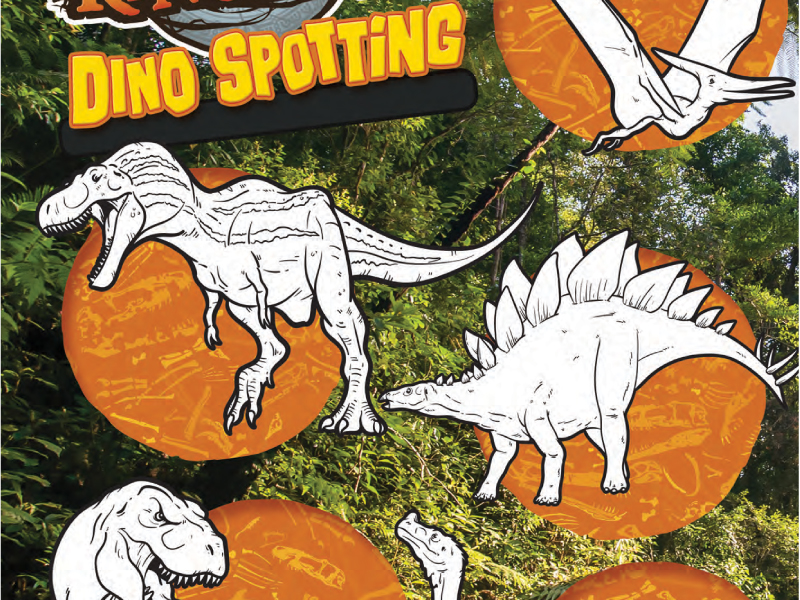 Dinosaur colouring in / display (1)